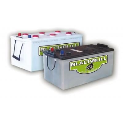 Bateria monoblock BLACKBULL 12V 250Ah (C100)