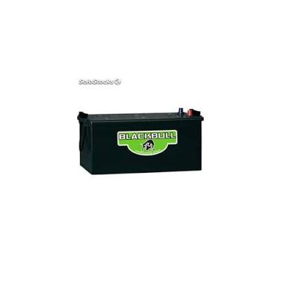 Bateria gel ciclo profundo 6V 260AH  C100 BLACKBULL